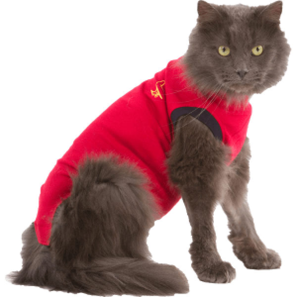 MPS -  Medical Pet Shirt® für Katzen